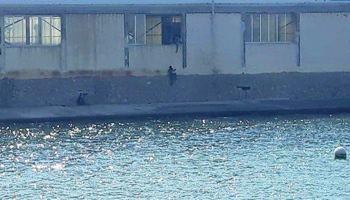 Πιτσιρικάδες «μπούκαραν» στο κολυμβητήριο από…παράθυρο!