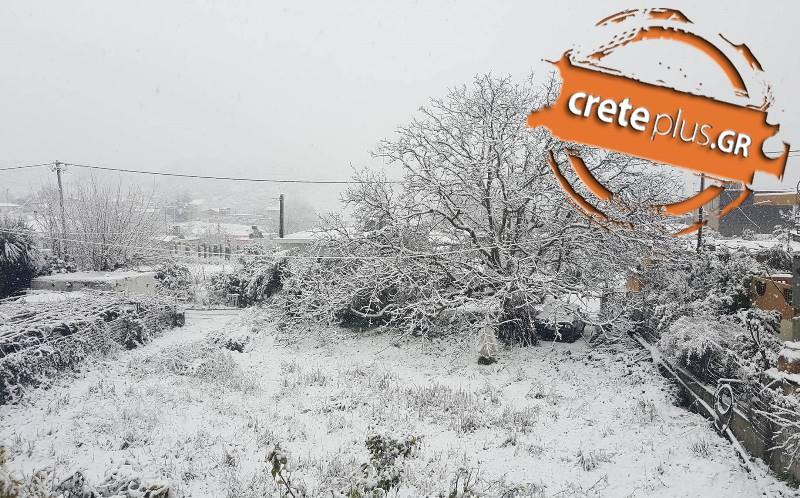 «Βουνό» τα προβληματα στην Κρήτη- Κλειστοί δρόμοι και...σχολεία- Αρκετά τροχαία και ακυρώσεις πτήσεων (pics)