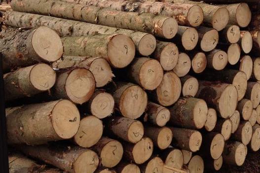 Ηράκλειο: Κλεμμένα  ξύλα μετέφεραν οι δύο νεαροί