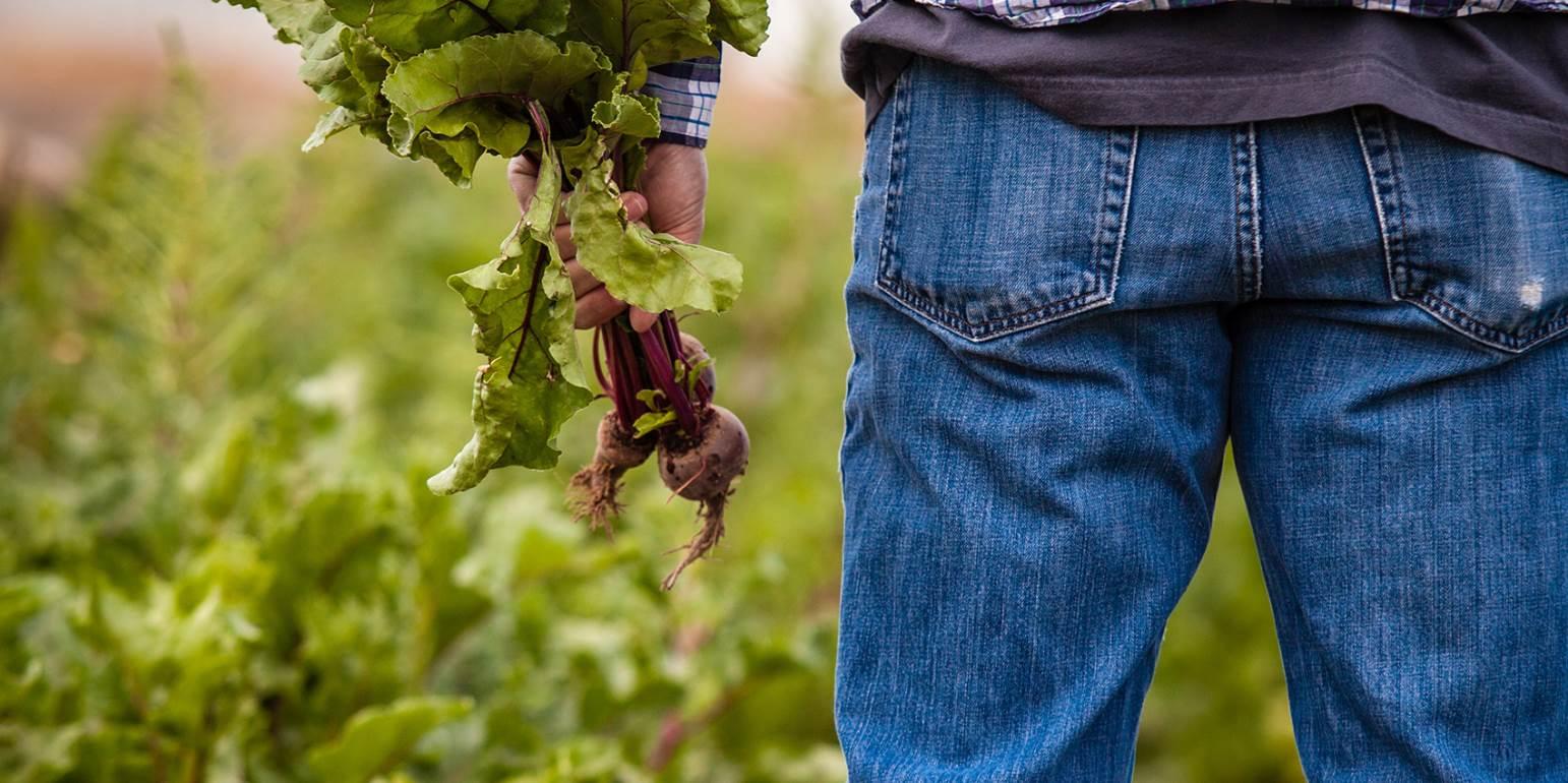 Διεκδικούν τις «κομμένες» επιδοτήσεις οι αγρότες