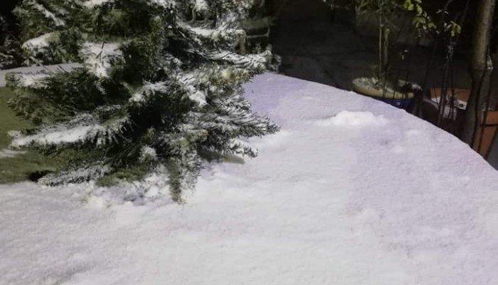 Το έστρωσε και στα ορεινά των Χανίων (φωτο)