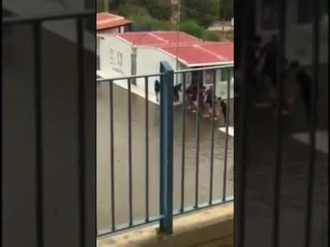 Απίστευτο: Μαθητές κάνουν ακροβατικά για να βγουν από το σχολείο