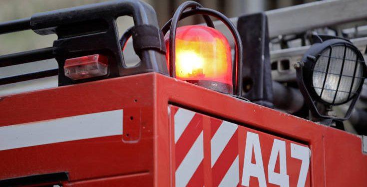 Η φωτιά στην περιοχή της Φοινικιάς έθεσε σε συναγερμό την Πυροσβεστική