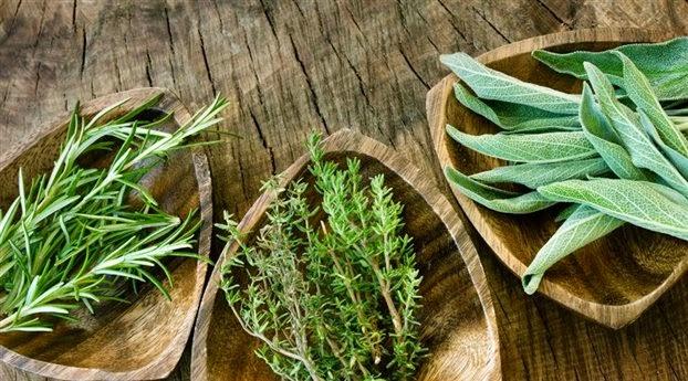 Τα βότανα της Κρήτης και οι θαυματουργές χρήσεις τους