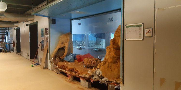Το Μουσείο Φυσικής Ιστορίας Κρήτης ….συστήνεται ξανά!
