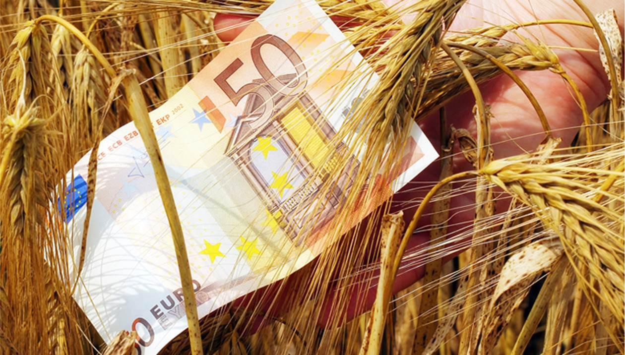 Ορατός ο κίνδυνος να χαθούν οι επιδοτήσεις χιλιάδων αγροτών