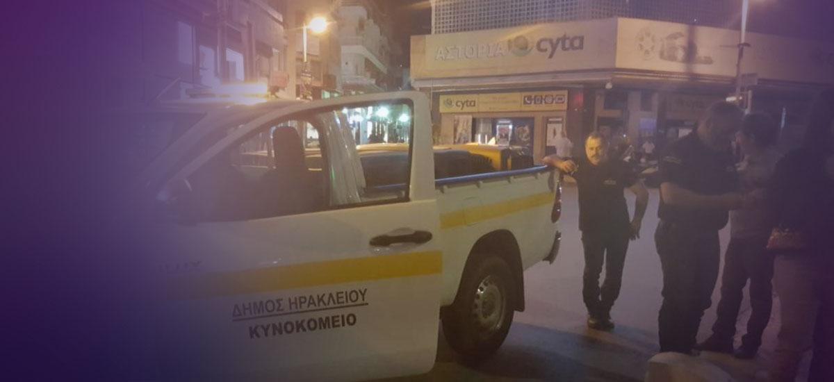Σκύλος επιτέθηκε σε νεαρή γυναίκα και αστυνομικό στο κέντρο του Ηρακλείου