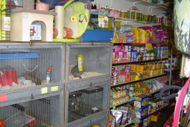 """Ποινική δίωξη και πρόστιμα """"καμπάνες"""" σε 6 Pet Shop χωρίς άδεια στο Ηράκλειο!"""