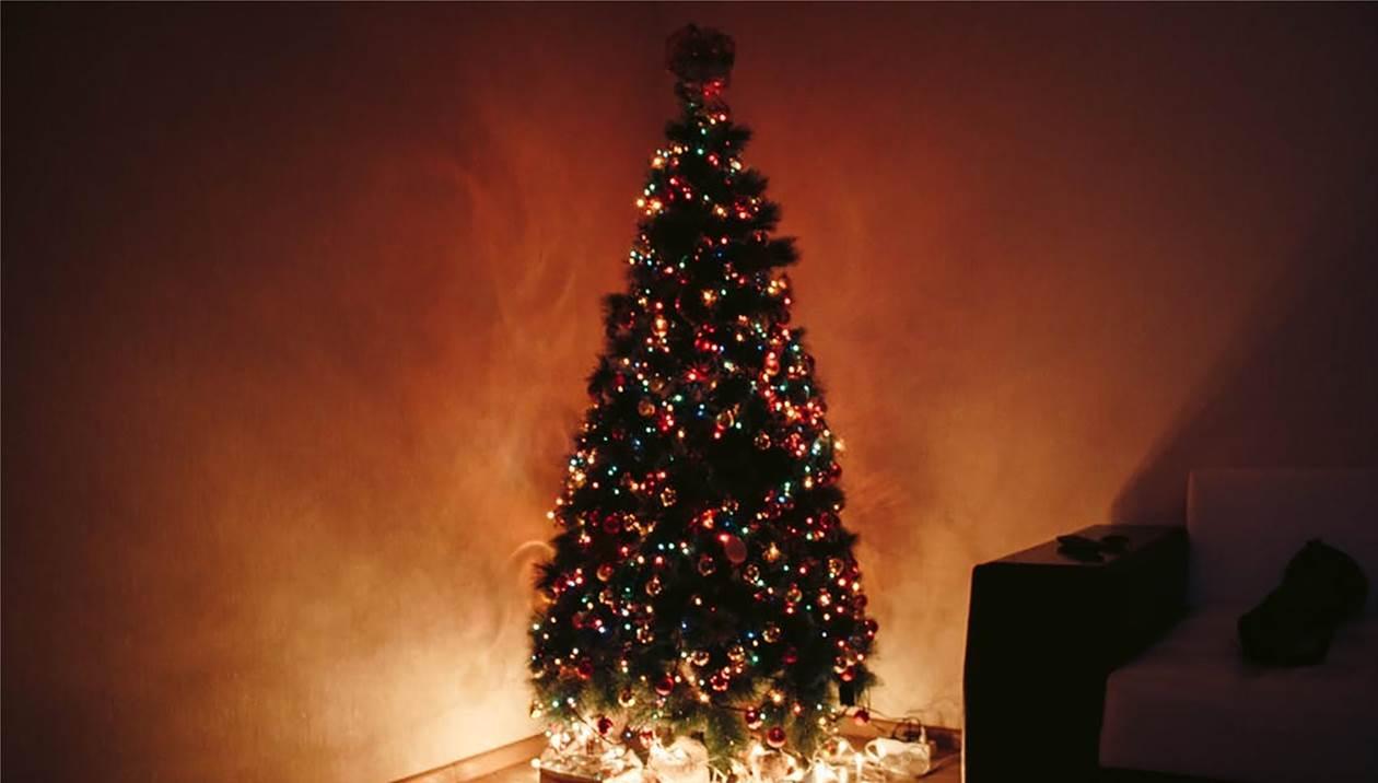 Η ιστορία του δέντρου των Χριστουγέννων
