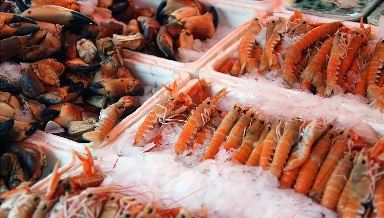 Κατασχέθηκαν 4,5 τόνοι γαρίδας και αλιευμάτων