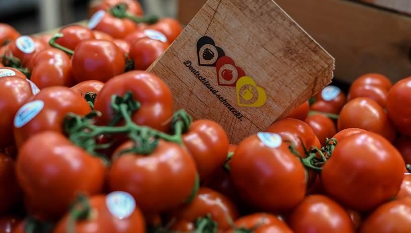 Κατρακυλά η τιμή της ντομάτας - Δεκάδες τόνοι στα αζήτητα