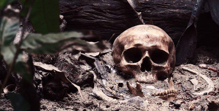 Ανθρώπινα οστά βρέθηκαν στην Αρκαδία
