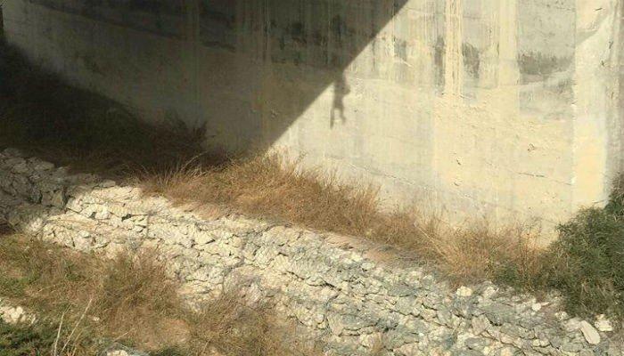Απίστευτη κτηνωδία: Κρέμασαν σκύλο σε γέφυρα (φωτο)