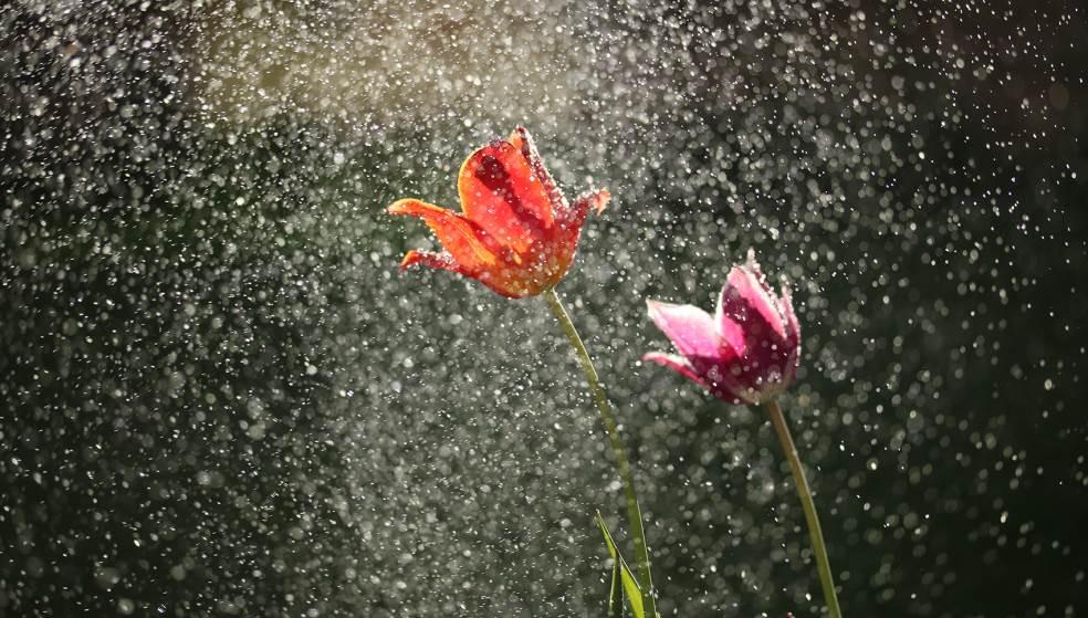 Πολύ νερό… προβλέπουν οι ειδικοί για το φθινόπωρο