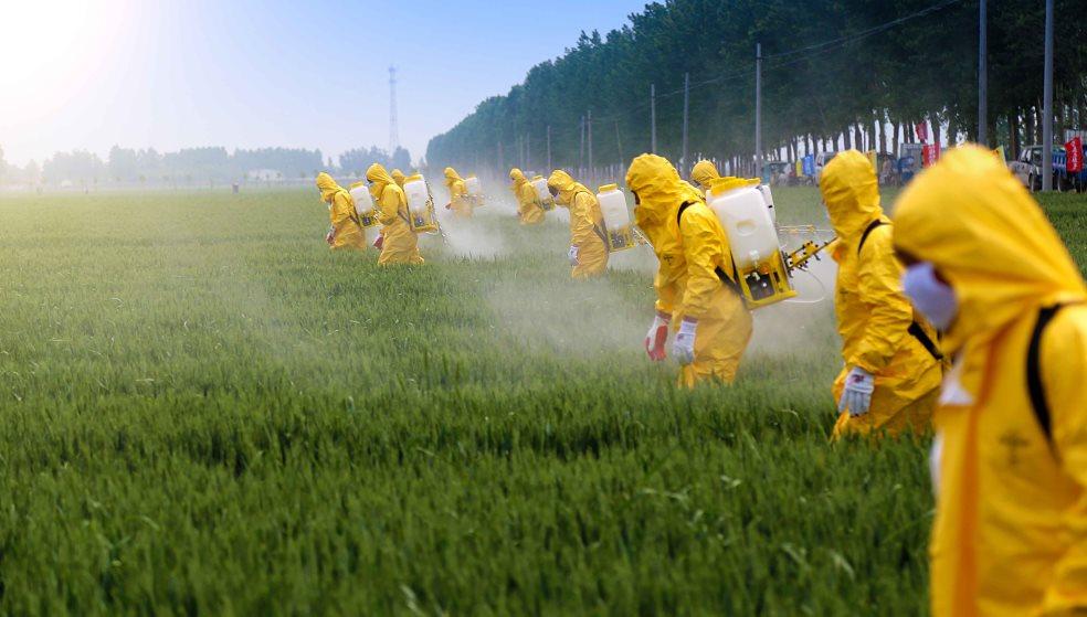Καταργούν δραστικά φυτοφάρμακα - «Πεθαίνουν» οι καλλιέργειες της Κρήτης
