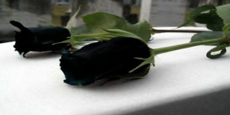40 μέρες χωρίς την… Μαρία Σμπώκου