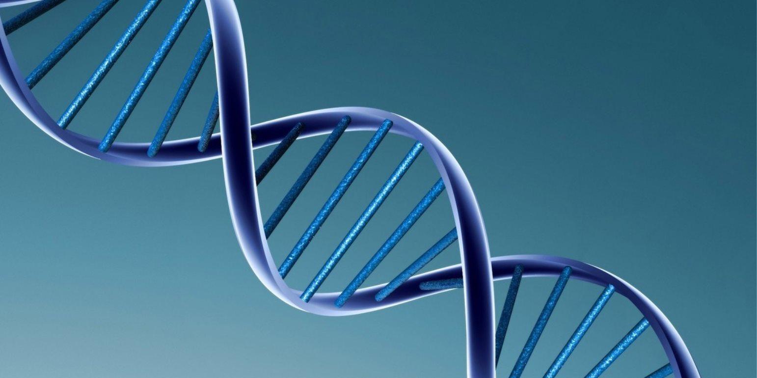 Μελέτη αρχαίου DNA: Όταν στην Κρήτη ζούσαν ιπποπόταμοι και ελέφαντες...