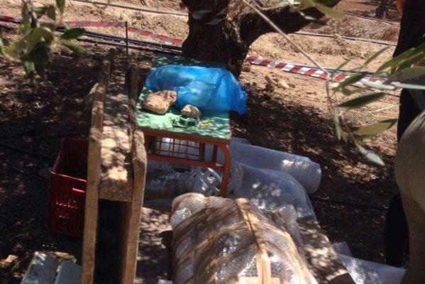 Υποχώρησε το έδαφος σε χωράφι στην Κρήτη και ανακαλύφθηκε μινωικός τάφος