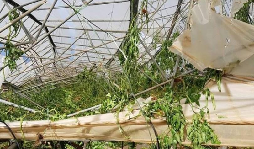 Ανεμοστρόβιλος ισοπέδωσε μεταλλικό θερμοκήπιο 10 στρεμμάτων στο Ελαφονήσι