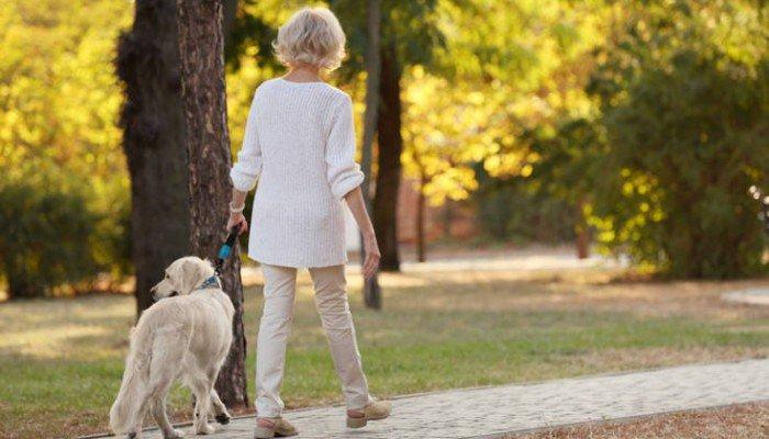 Έφτιαξε βίντεο κτηνοβασίας με τον σκύλο της και κατέληξε σε περιπέτειες