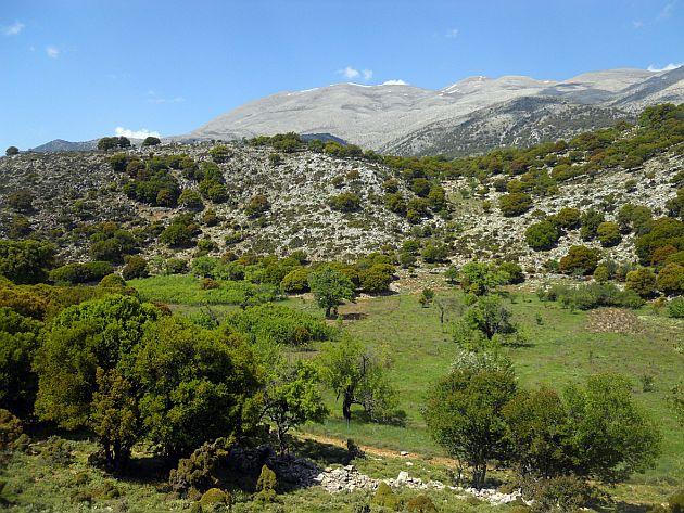 Το έργο «LIFE Natura2000Value Crete» διοργανώνει ημερίδα στον Δήμο Φαιστού στις 28 Φεβρουαρίου 2017