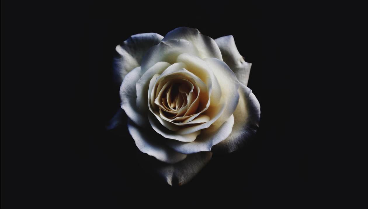 Βαρύ πένθος στην Ομόνοια Καλλιθέας, «έφυγε» η 19χρονη κόρη του Χρ.Τζαμούση