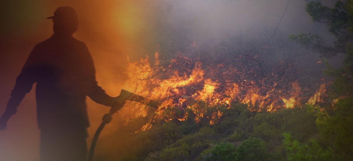 Τα ξερά χόρτα «άρπαξαν» και οι φλόγες επεκτάθηκαν …