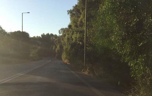 Η ζούγκλα του...ΒΟΑΚ που αποτελεί κίνδυνο για τους οδηγούς (pics)