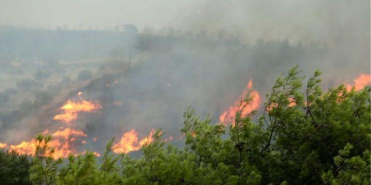 Μεγάλη φωτιά στην Βιάννο – Συνελήφθη ένας 50χρονος