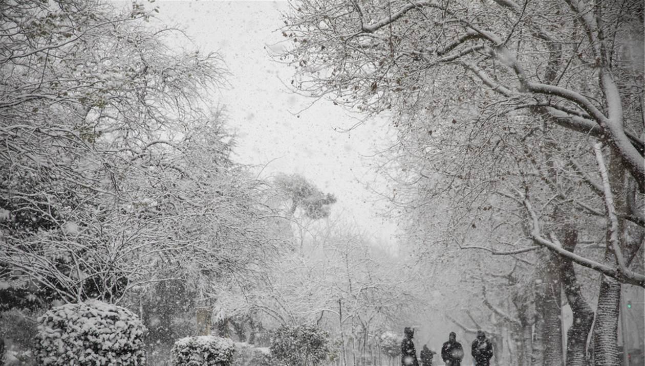 Σοβαρά προβλήματα από την επέλαση του χιονιά, που «σαρώνει» τη χώρα