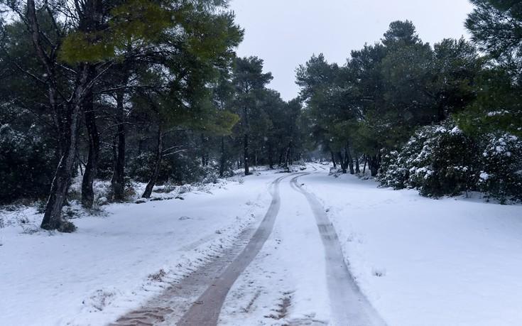 Κλειστά αύριο τα σχολεία στο δήμο Καρδίτσας