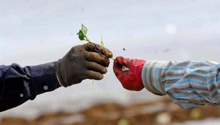 Καταργείται το τέλος επιτηδεύματος για αγροτικούς συνεταιρισμούς