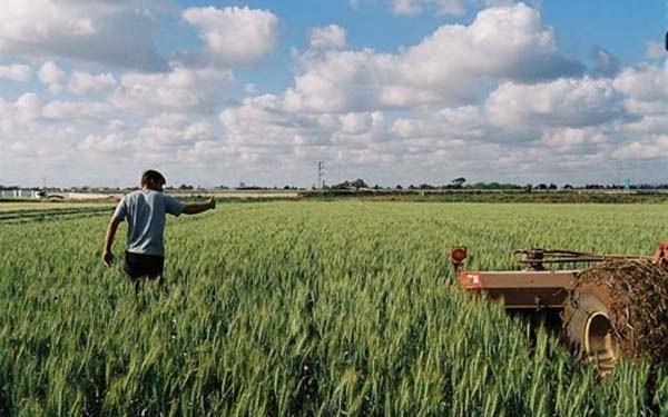 Παράταση έως τέλη Ιούνη για μεταβιβάσεις - Τι πρέπει να ξέρουν οι αγρότες στην Κρήτη