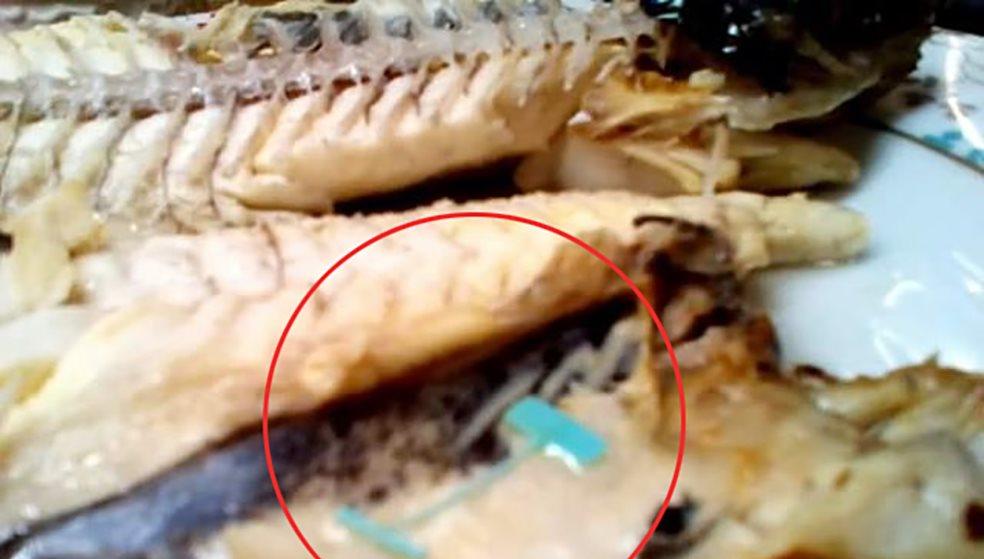 Απίστευτη περιπέτεια Ηρακλειώτη  Βρήκε ετικέτα μέσα στο ψάρι του d77088e69e8