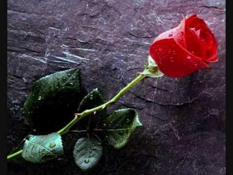 Πέθανε η αγωνίστρια της Αριστεράς, συγγραφέας και ποιήτρια Αλεξάνδρα Βλάσση Θεοδωρικάκου