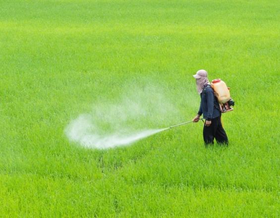 Κρήτη: Ανησυχία για ληγμένα φυτοφάρμακα - Η απάντηση για τις ημερομηνίες