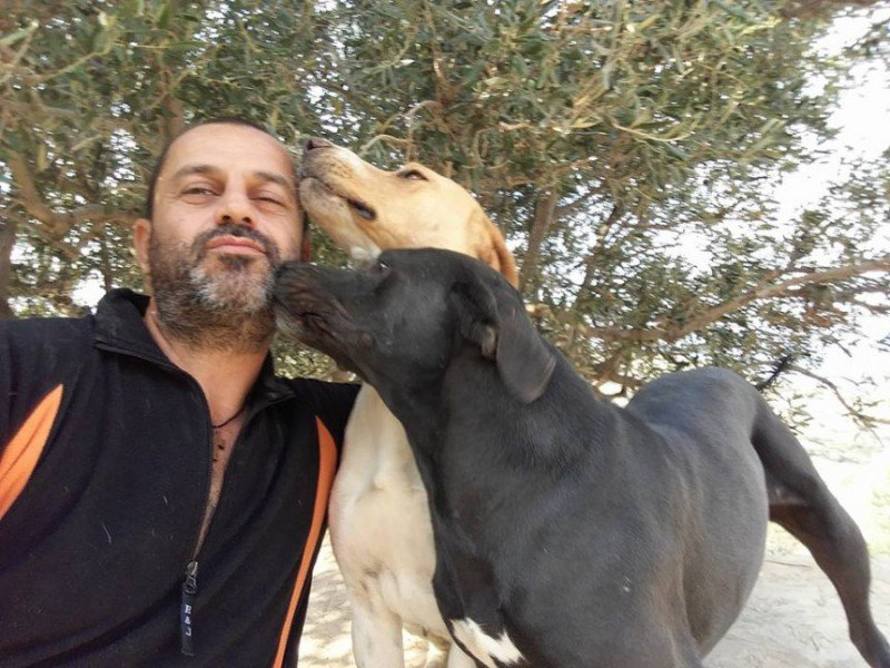 Ο άντρας που ζει στην Κρήτη συντροφιά με 250 σκυλιά- Ποιος είναι ο Θεόκλητος Προεστάκης (pics)