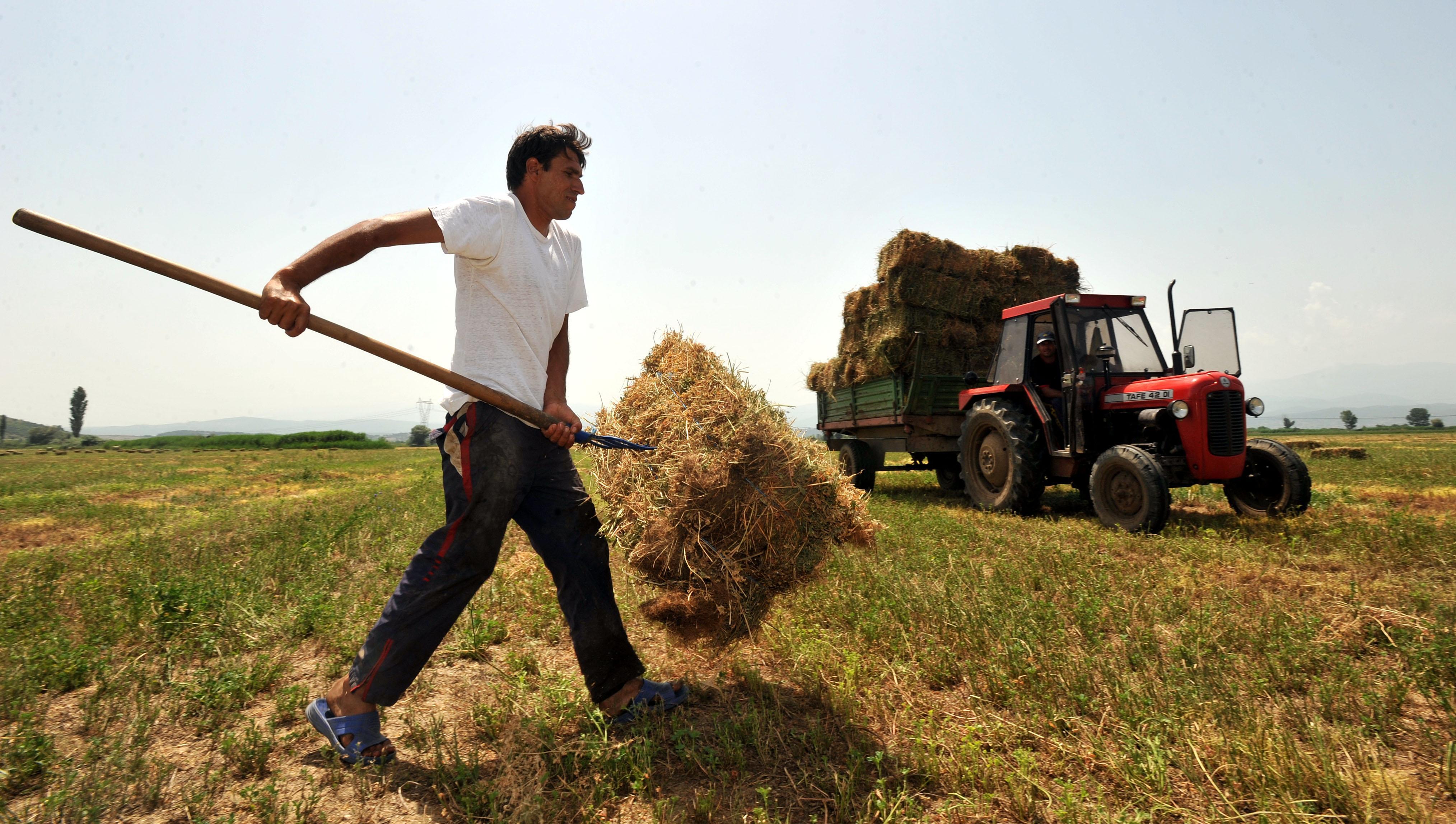 Ουσιαστική εκπαίδευση και κατάρτιση του Επιχειρηματία-Αγρότη