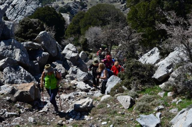 Κρήτη: Η βόλτα στην εξοχή... έκρυβε περιπέτεια για μια γυναίκα