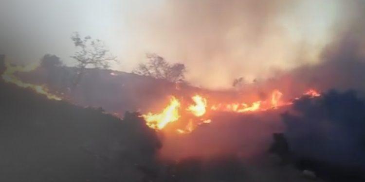 Αύξηση θερμοκρασίας -Μεγαλύτερος ο κίνδυνος εκδήλωσης πυρκαγιάς