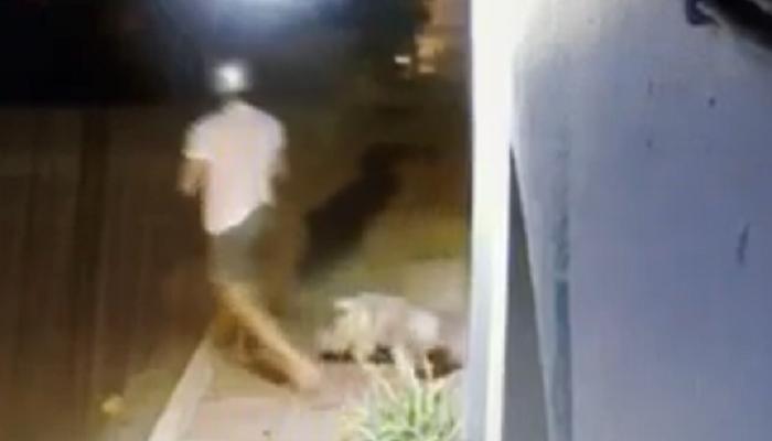 Εγκατέλειψε το σκύλο έξω από κτηνιατρείο και έφυγε σαν κύριος (βιντεο)