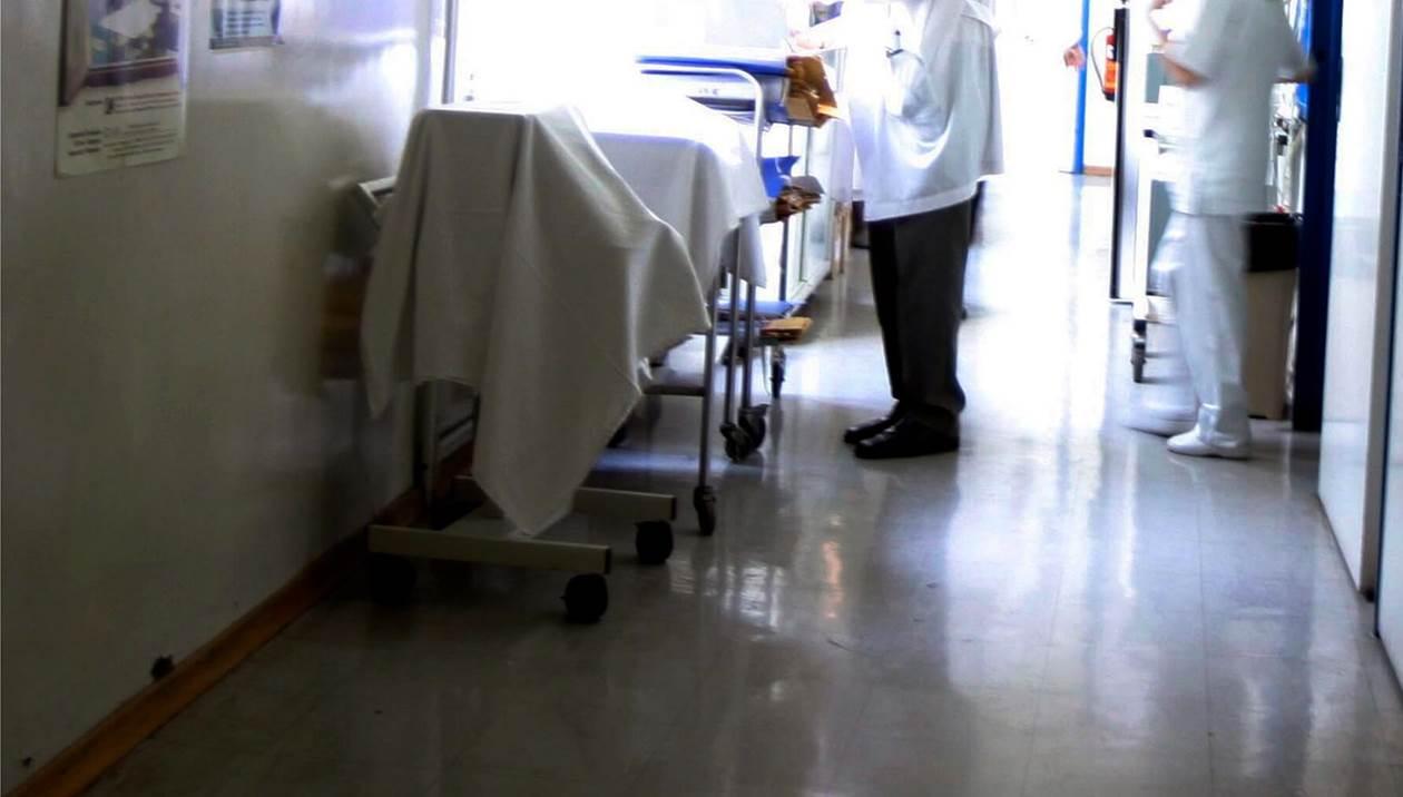 Σκύλος δάγκωσε 10χρονο παιδί - Στην ΩΡΛ του ΠΑΓΝΗ το αγόρι, υπό στενή ιατρική παρακολούθηση