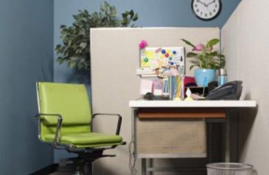 Τα φυτά στο γραφείο αυξάνουν... την παραγωγικότητα