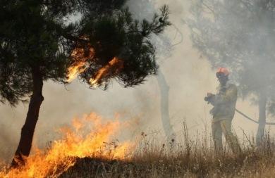 Τέθηκε υπό μερικό έλεγχο η φωτιά στο Ίνι