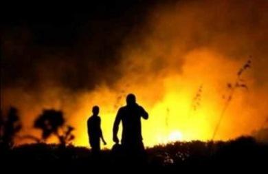 Φωτιά σε περιοχή κοντά στην Αγία Πελαγία