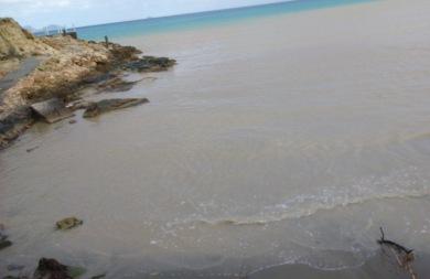 Γέμισε λάσπη και σπασμένα δέντρα η παραλία του Καρτερού! (pics)