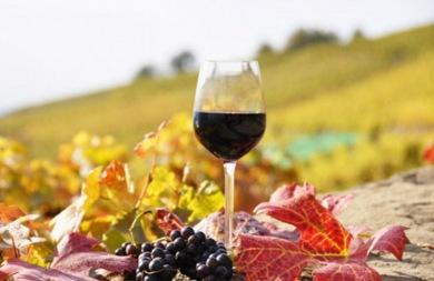Γιορτάζουν τον Αϊ Γιώργη τον Μεθυστή και δοκιμάζουν... κρασιά!