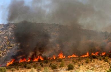 Υπό μερικό έλεγχο η φωτιά στον Κουτσουρά Λασιθίου