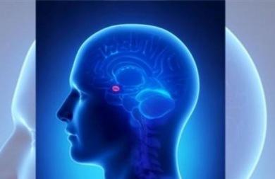Έρευνα: Πόσο κοντά είναι η σχιζοφρένεια με τη νόσο Αλτσχάιμερ;