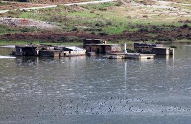 Ένα νέο οικοσύστημα έχει γεννηθεί εκεί που σκάβει ο... μετροπόντικας στον Αποσελέμη (pics)